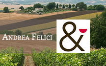 Lea&Sandeman – Wine of the Week: Andrea Felici