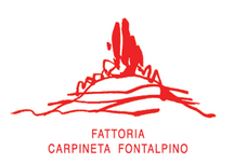 Fontalpino 2016 awards